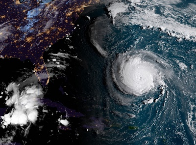 https://www.pennlive.com/expo/news/erry-2018/09/5ffb1ced264122/hurricane-florence-storm-bears.html